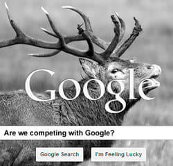 Is Google the Competion